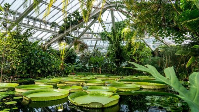 Le Jardin Foto's